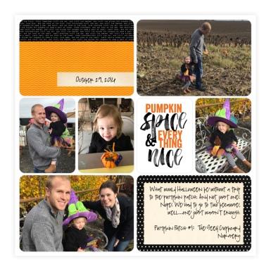 Pumpkin Patch #1